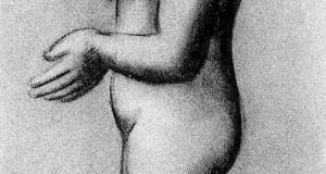 Пабло Пикассо «Обнаженная в профиль»